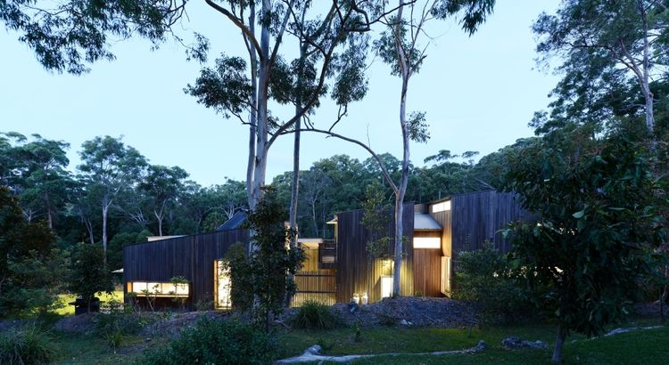 modern house with dark wood facade
