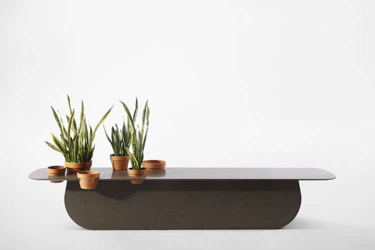 caesarstone Milan Raw Edges Islands potted plants vases