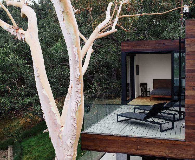 terrace off the bedroom surrounded by trees