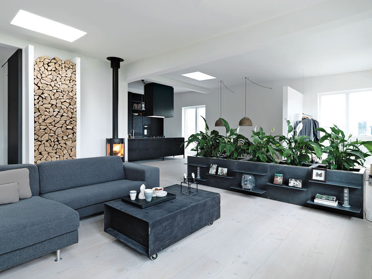 Scandinavian interior design, loft