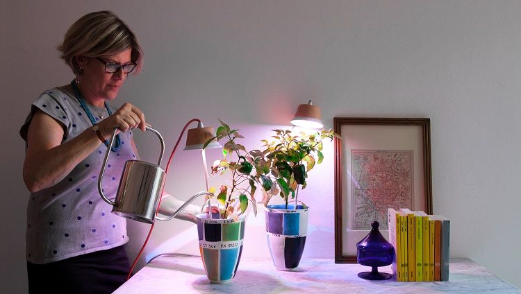 Led light for indoor gardening