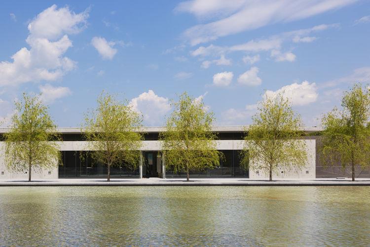 tadao ando visitor centre reflecting pools trees
