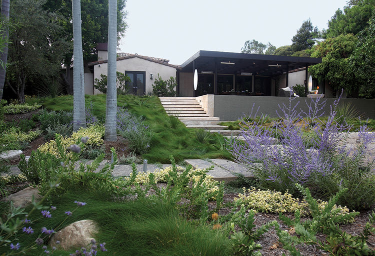 LA home with yard of drought-resistant plants