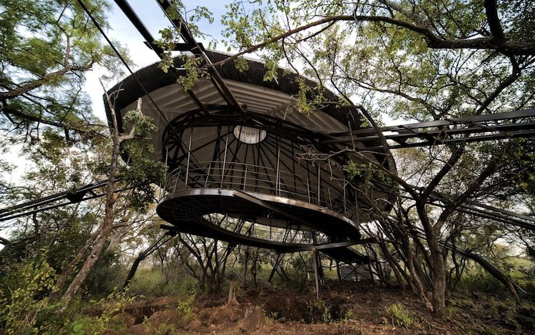 Suspended lookout and fossil site cover in South Africa