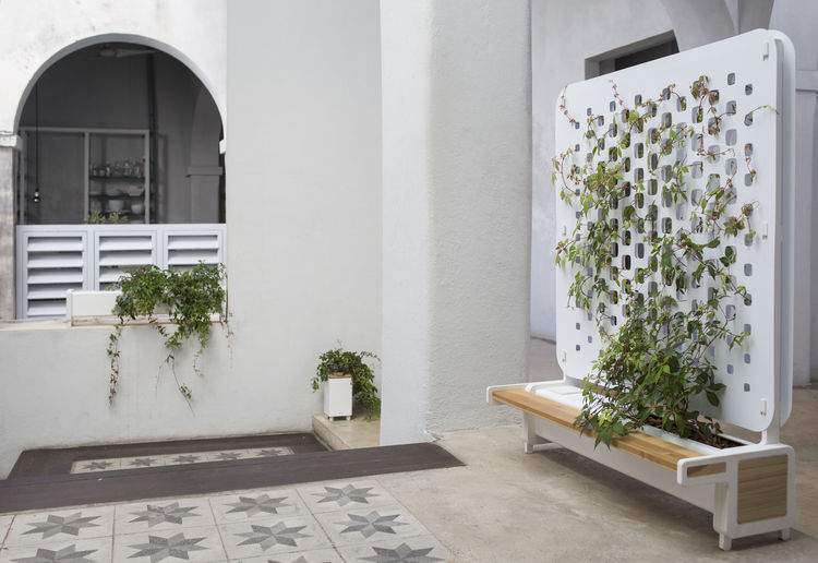 Serie green planters and screens in courtyard.