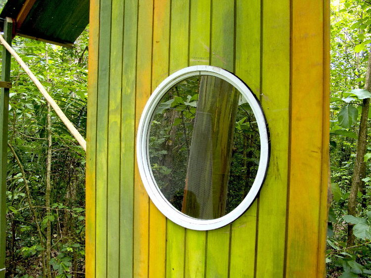 Porthole window in a tree house in the Puerto Rico tropics