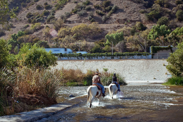Horseback Riding in the Glendale Narrows