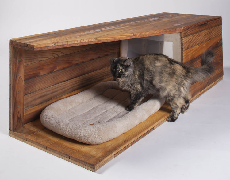 Cat shelter by Abramson Teiger Architects