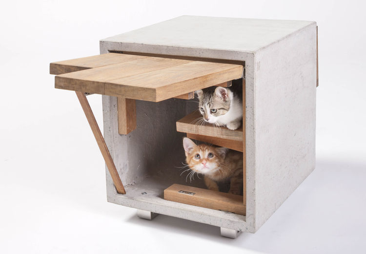 Cat Cube by Standard Architecture | Design