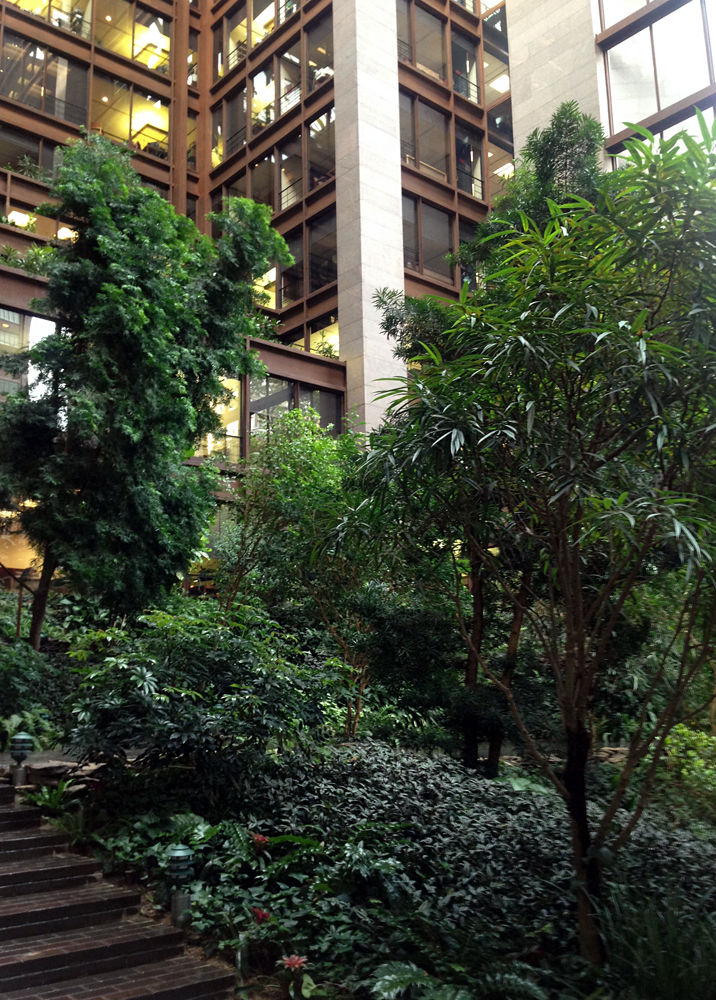 Dan Kiley atrium garden at the Ford Foundation in New York City