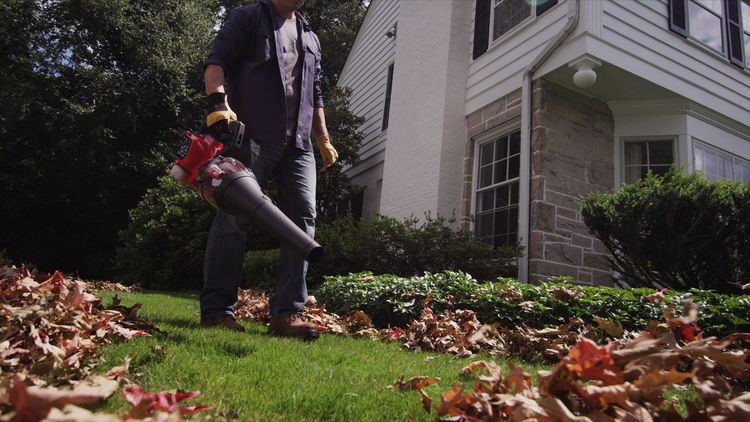 Troy Bilt clears yard of leaves.