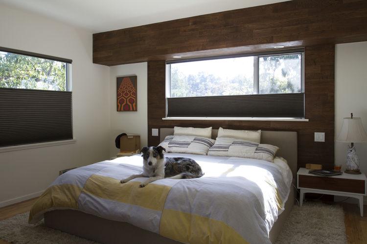 Vidal Renovation Bedroom