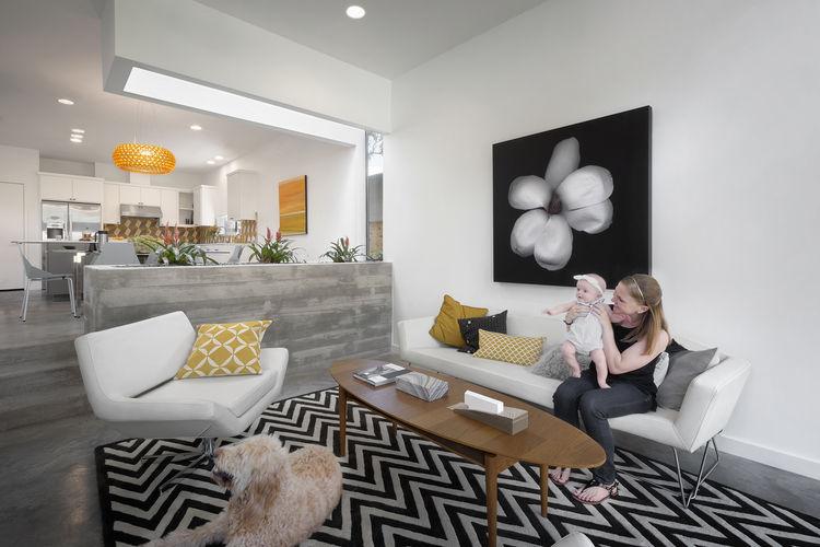 Austin Tree House Living Room