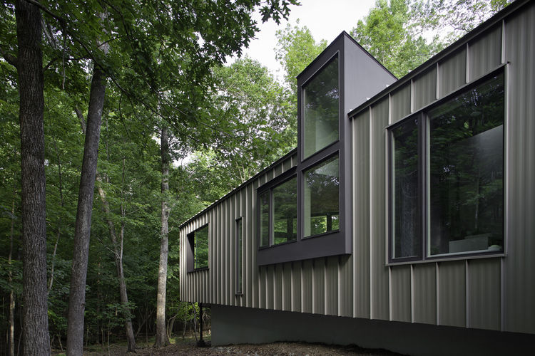 Durham, North Carolina residence with kitchen windows overlooking the woods