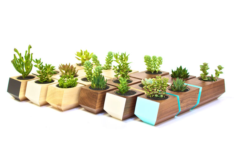 Handcrafted modern planters made in Portland by Revolution Design House
