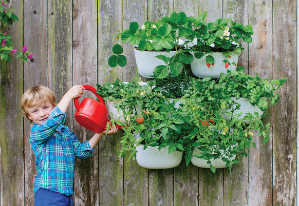 Woolly Pocket Living Wall planters