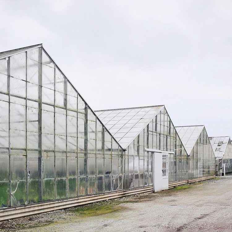 The Greenhouses of Half Moon Bay
