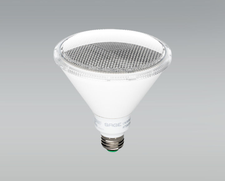 The LED Outdoor Floodlight from SAGE by Hughes