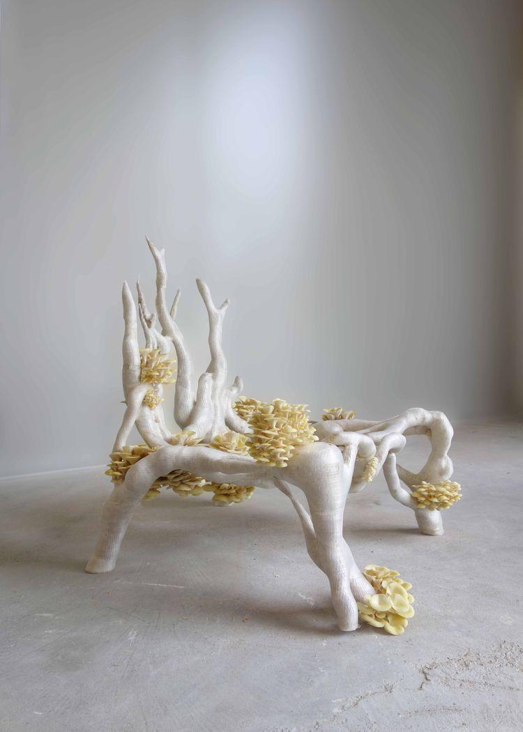 Eric Klarenbeek's chair, The Mycelium Project