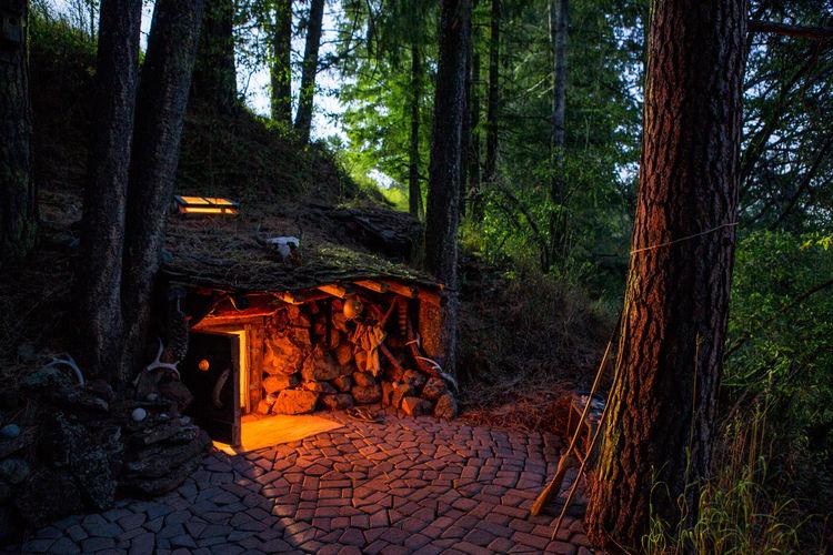 Woodsy cabin built into the hillside in Joseph, Oregon