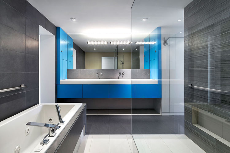 Renovated DC Row House bathroom with wheelchair accessibility.