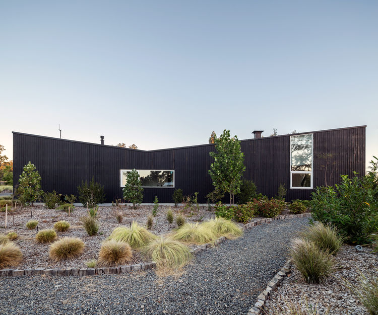 Stained-pine exterior references local vernacular architecture in Chile.