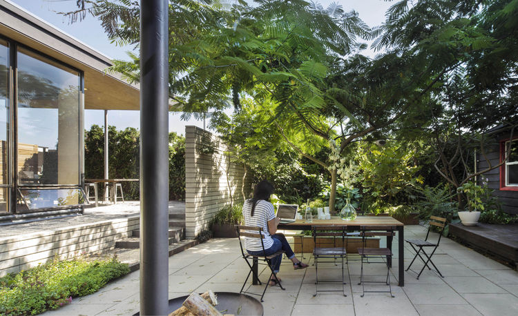 Sunken courtyard with a shade tree