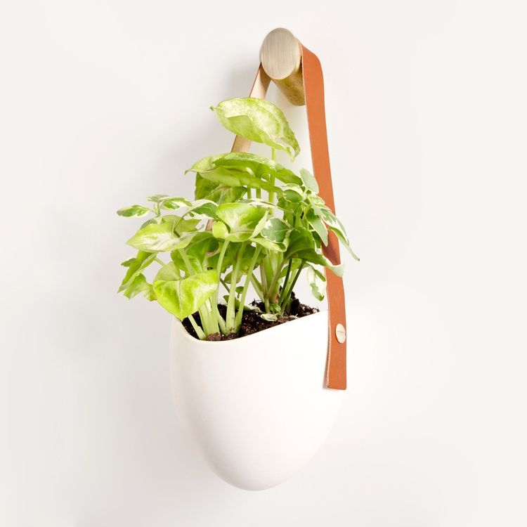 Ceramic planter with leather hanging mechanism and brass hook