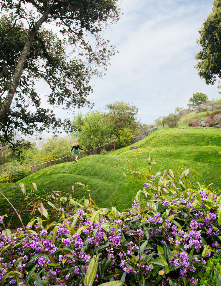 A California home's backyard is defined by mounded earth forms.