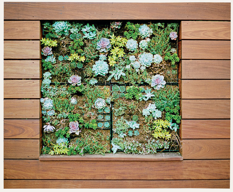 modern landscaping outdoor ipe wood vertical planter