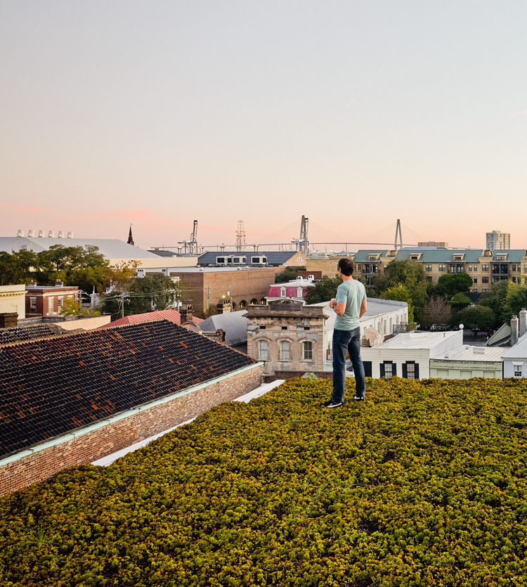 A man stands atop green roof in Charleston, South Carolina.