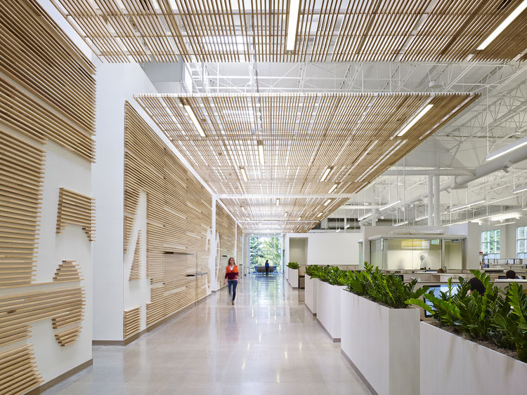 "FSC-certified ash bordering ""main avenue"" of modern design center."