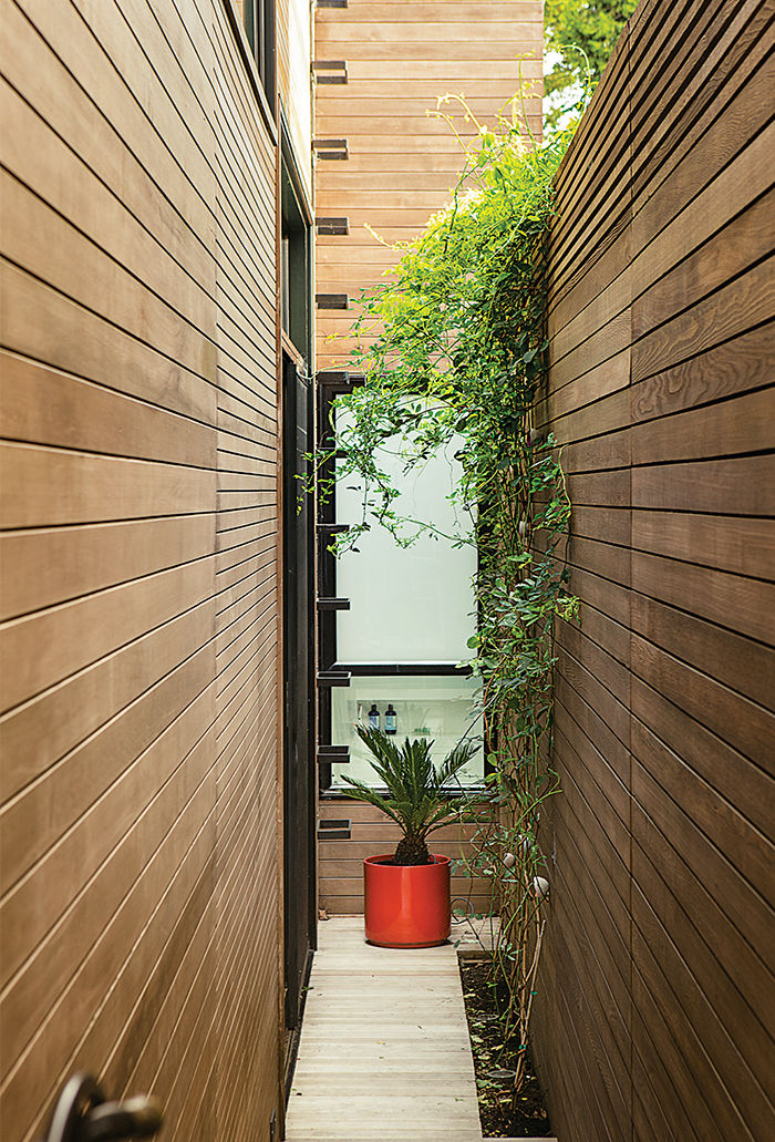San Francisco residence with side exterior garden