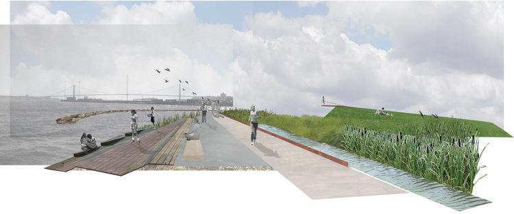 Margie Ruddick landscape architect book Wild Design staten island new york tidal wetlands park