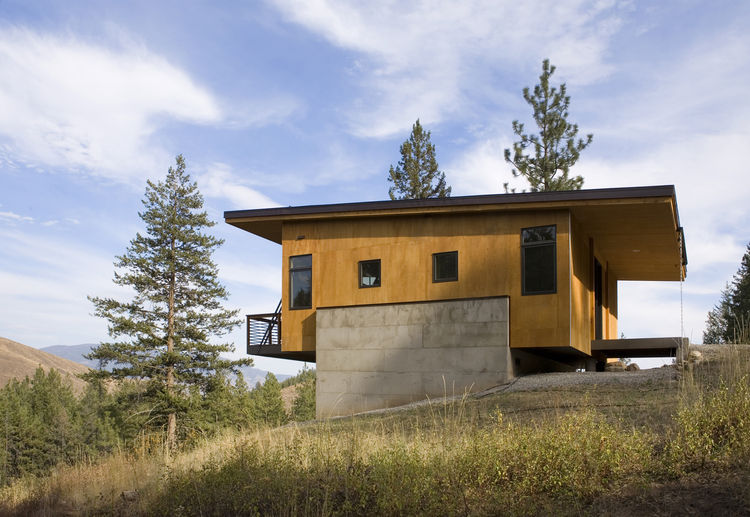 Pine Forest Cabin plywood and concrete facade