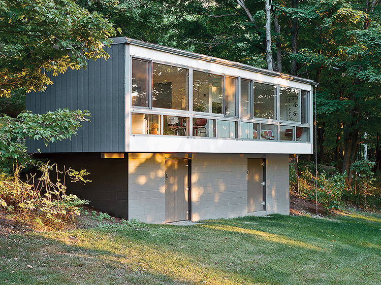 Modern guesthouse renovation in New York with Arcadia curtain wall