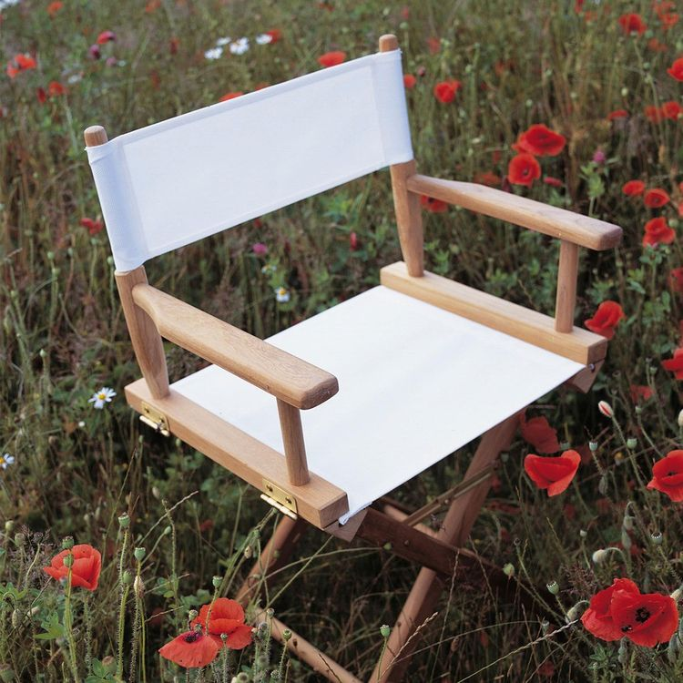Updated modern director's chair in canvas and teak