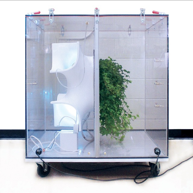 Active Modular Phytoremediation Wall System by Center for Architecture Science and Ecology, SOM and Rensselaer