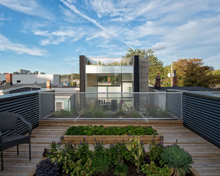 Urban rooftop garden on a live/work home