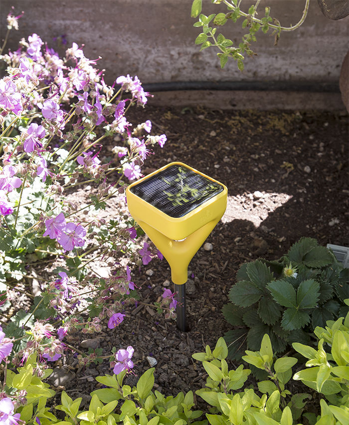 Edyn smart garden sensor in the garden at the Stillwater Dwellings prefab