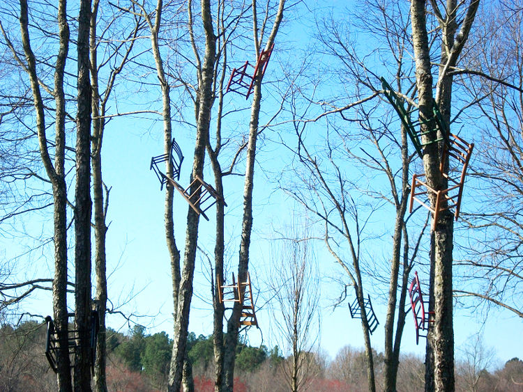 Chairs in trees by Tom Shields
