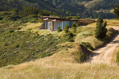 Green roof in california environmentally friendly