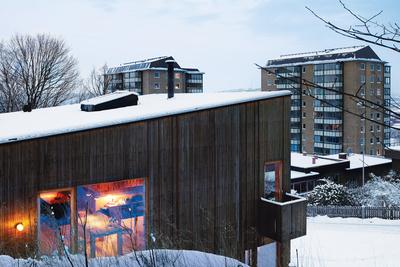 bornstein facade with cityscape