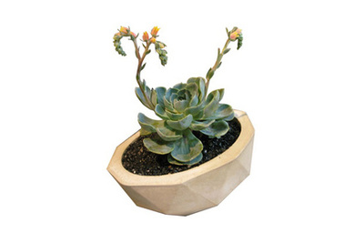 kelly lamb geo planter