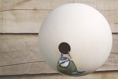 birdhouses birdball