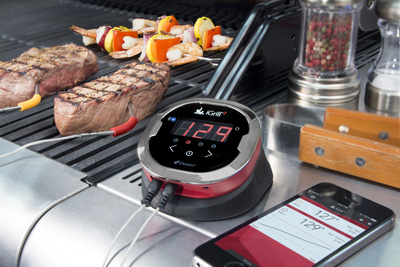 iGrill2 meat probe with smartphone app