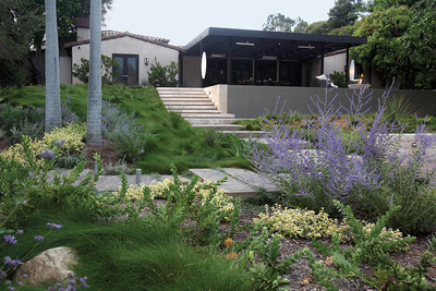 LA home with drought-resistant native plants