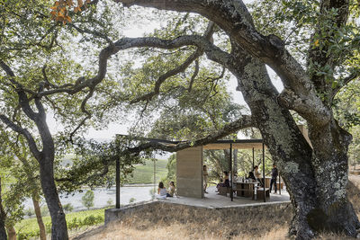 modern pavilion at a winery