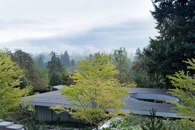 courtyard house roof forest