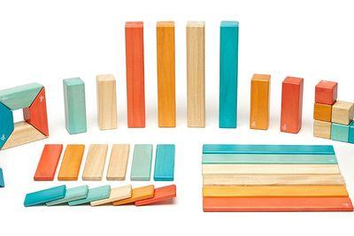 Tegu Magnetic Block Toys